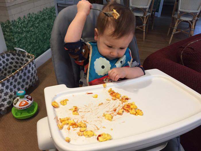 Why do babies throw their food plates?-   iWONDER