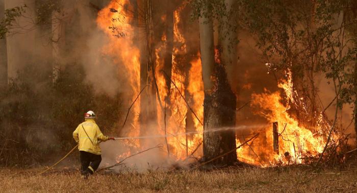 رجال الإطفاء في أستراليا يخشون اقتراب حرائق الغابات من سيدني
