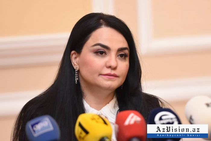 """""""Bəzən məhkəmə işləri təhrif olunmuş formada verilir"""" - Aynur Sabitova"""