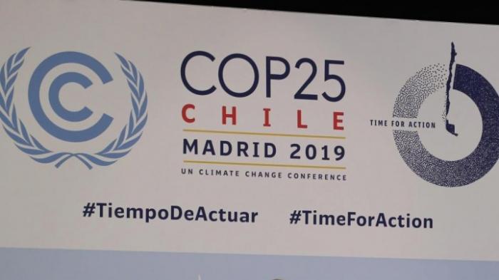 Uneinigkeit und Proteste beim Klimagipfel