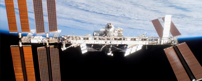 Microgravity seems to neutralise majority of cancer cells