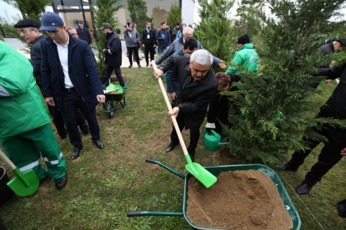 """Los petroleros se unieron a la campaña ecológica """"Plantar 650 mil árboles en un día"""""""