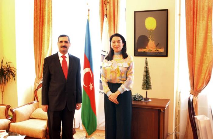 Ombudsman Türkiyə səfiri ilə görüşüb