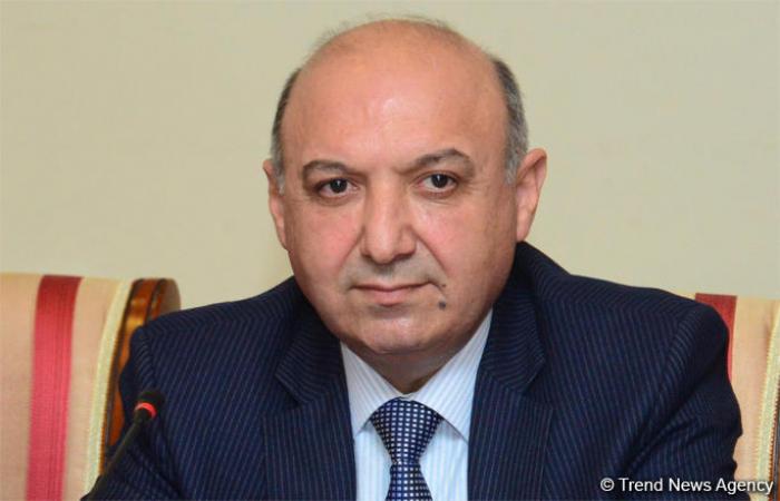 Materialien, die armenischen Vandalismus enthalten, wurden internationalen Organisationen präsentiert -  Sayavush Heydarov