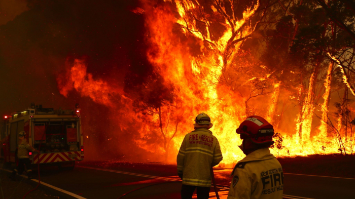 Australia fires: NSW declares week-long state of emergency