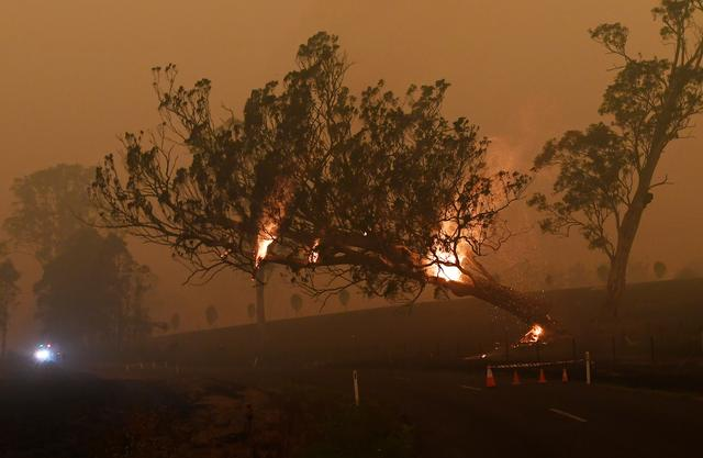 Australia uses bushfires breather to plan for the next onslaught