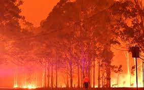 Australian bushfires ease, promise reprieve to build defenses