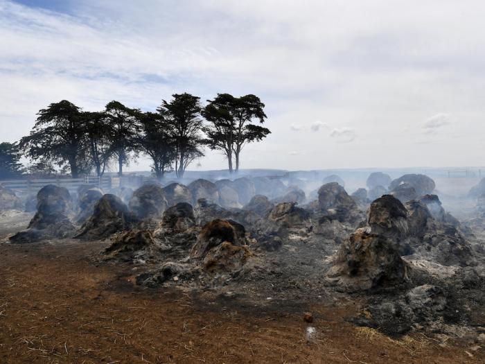 Australie:   le «méga-feu» sous contrôle, de la pluie attendue
