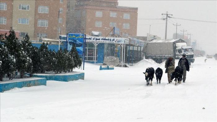 Heavy snow, torrential rain claim 15 lives in Afghanistan