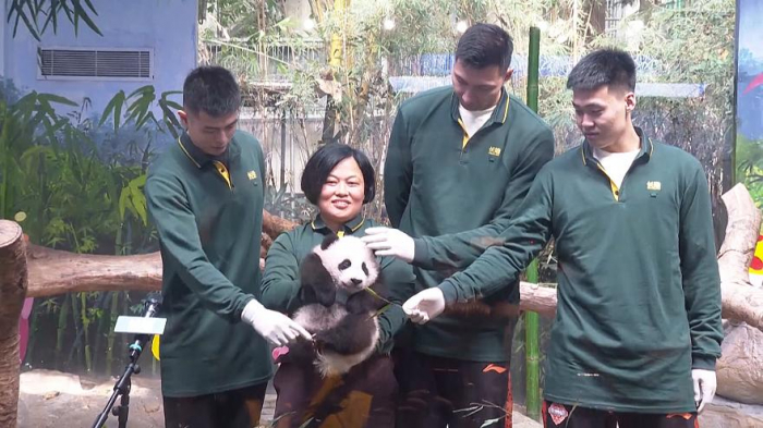 Baby panda Guoqing celebrates 100 days-   NO COMMENT