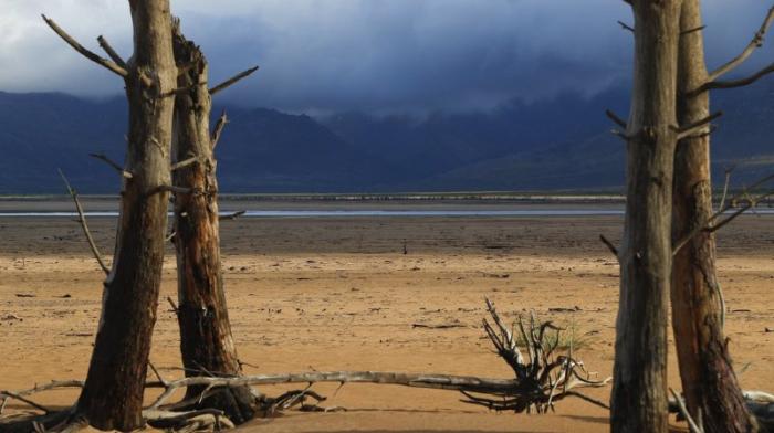 ONU:   45 millions de personnes menacées par la famine en Afrique australe