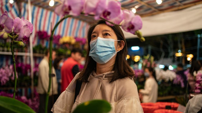 Los científicos buscan el origen del coronavirus de Wuhan en un animal