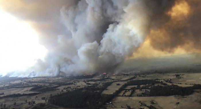 Forscher - Australische Buschbrände sorgen für deutliche CO2-Zunahme