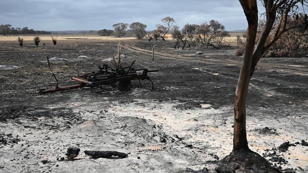 Australie:  les orages éteignent les incendies de l