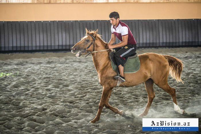 Ən bahalı Qarabağ atı 50 min manata təklif edilir