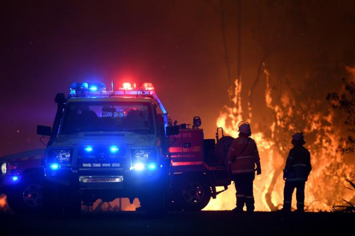 Australian wildfires may have killed half a billion animals and plants