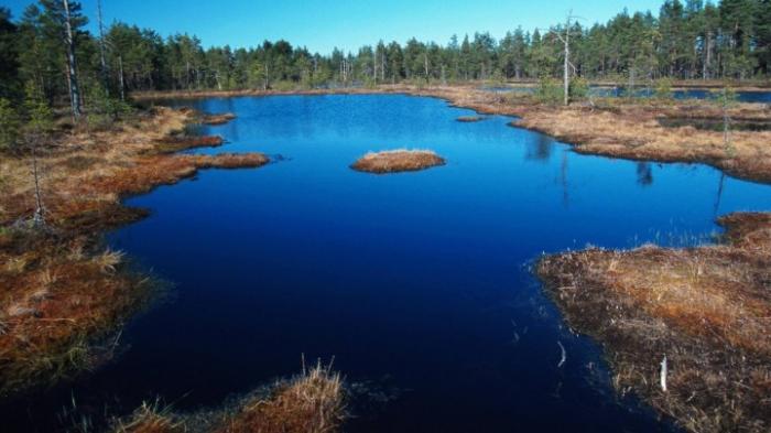 Mindestens 30 Prozent der Erde sollen Naturschutzgebiete sein