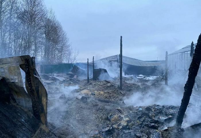 Rusiyada 8 nəfər istixanada yanaraq ölüb