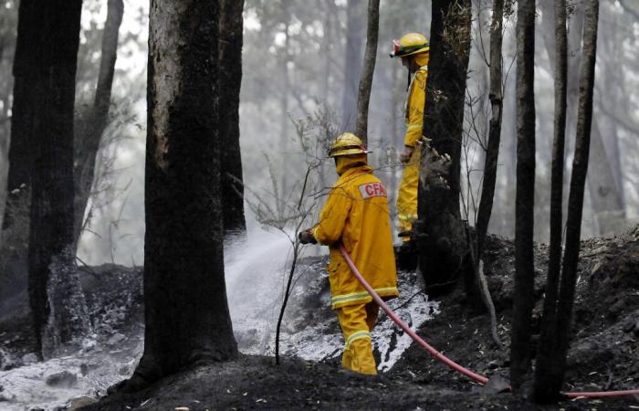 Australie:   tous les incendies maîtrisés dans l
