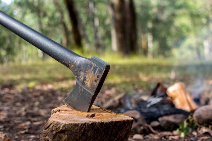 Qanunsuz yolla kəsilən meşə materialı aşkarlandı