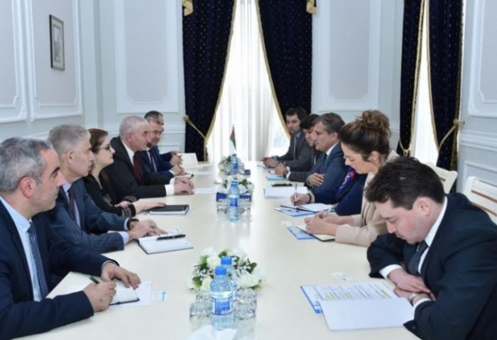 Turkic Council delegation meets Azerbaijan CEC chairman