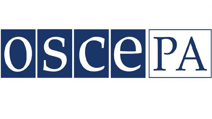 OSCE PA observer: no violations of elections legislation detected