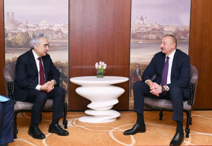 Prezident Münhendə Fatih Birol ilə görüşüb - YENİLƏNİB