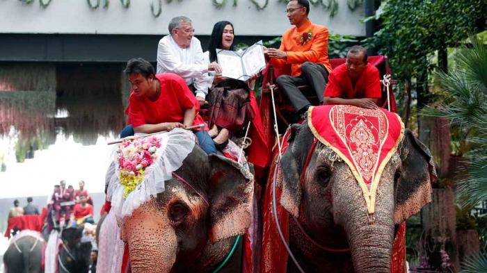 Bodas masivas en Tailandia a lomos de elefantes por el Día de San Valentín