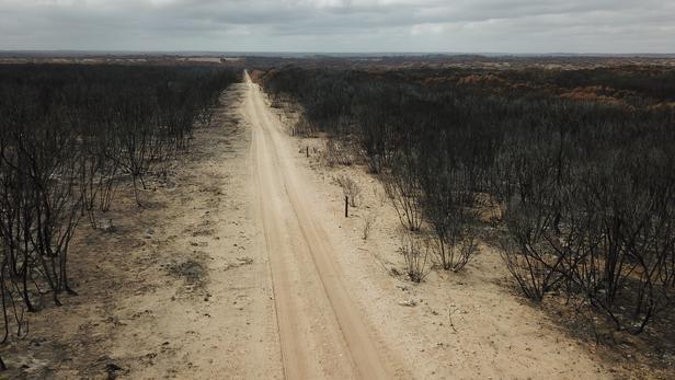 Sécheresse en Australie:   chute historique de la production agricole
