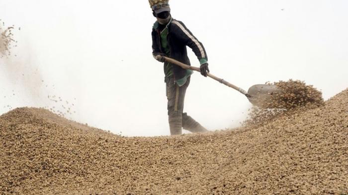 Au Sénégal, la forte demande chinoise perturbe le secteur de l