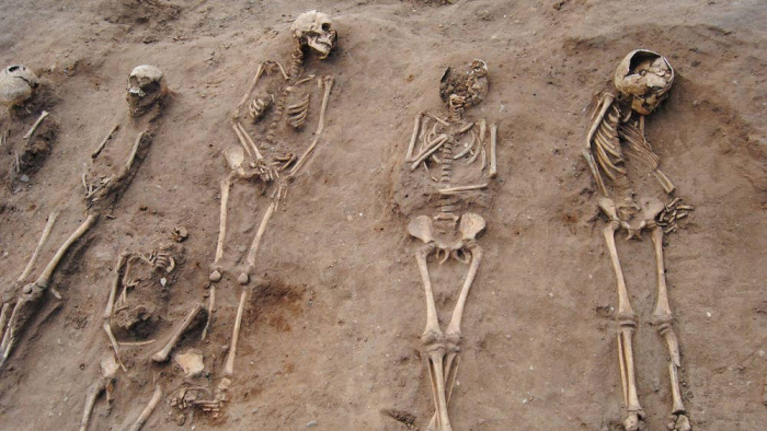 Medieval Black Death burial site uproots previous theories