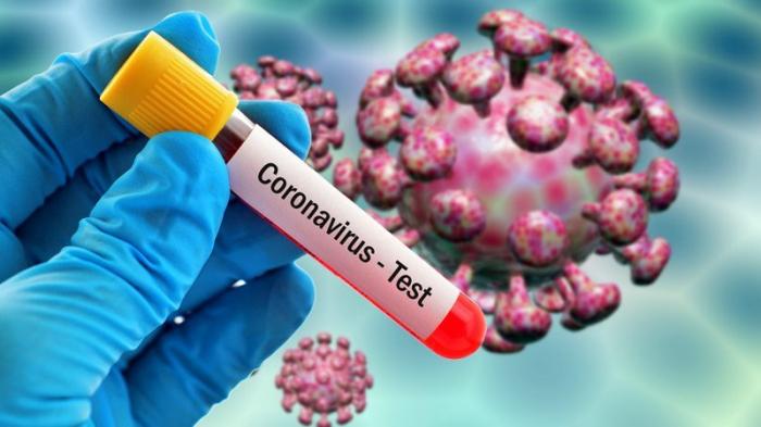 Cənubi Koreyada 833 nəfər koronavirusa yoluxdu