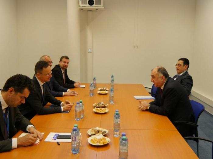 Azerbaijani, Hungarian FMs meet in Vienna