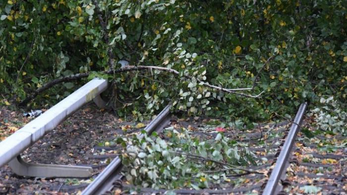 Sturm sorgt für Probleme auf der Schiene