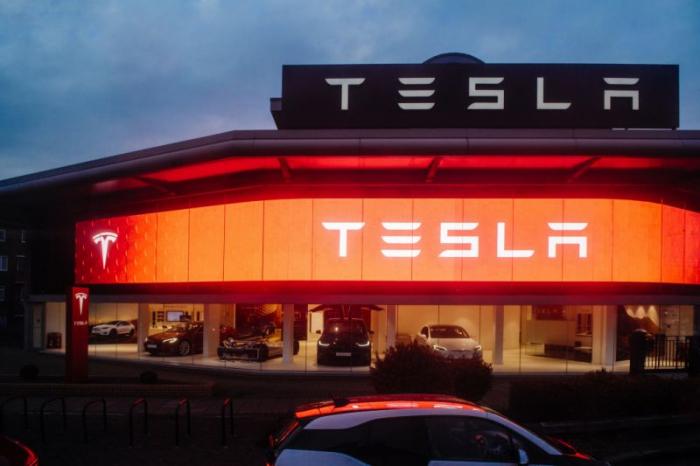 Tesla obligé de stopper l'abattage d'arbres pour sa première usine d'Europe