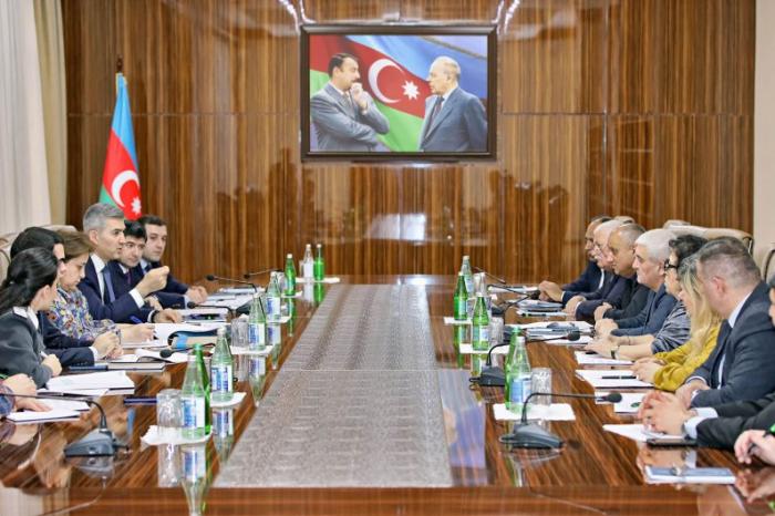 Miqrasiya Xidmətində Milli Fəaliyyət Planı müzakirə edildi - FOTO