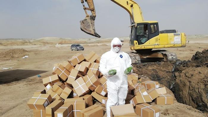 Çindən gətirilən 1500 kq kivi qurusu məhv edildi - FOTO