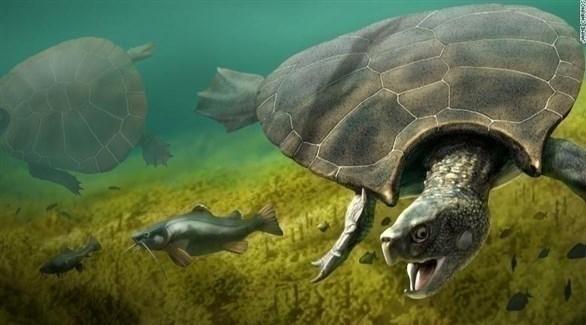 عمرها 154 مليون عاماً.. العثور على سلحفاة متحجرة في ألمانيا