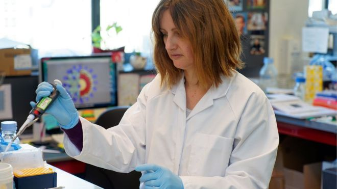 Coronavirus: How close are we to a vaccine? -   iWONDER