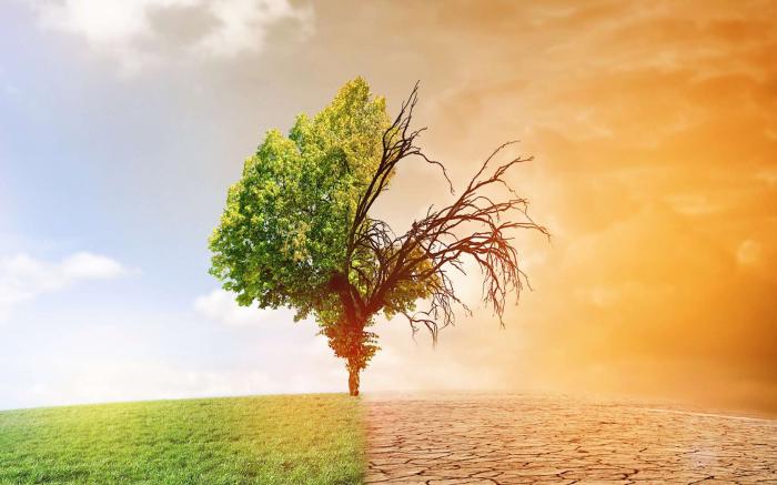 Le stress thermique pourrait toucher plus de 1,2 milliard de personnes par an