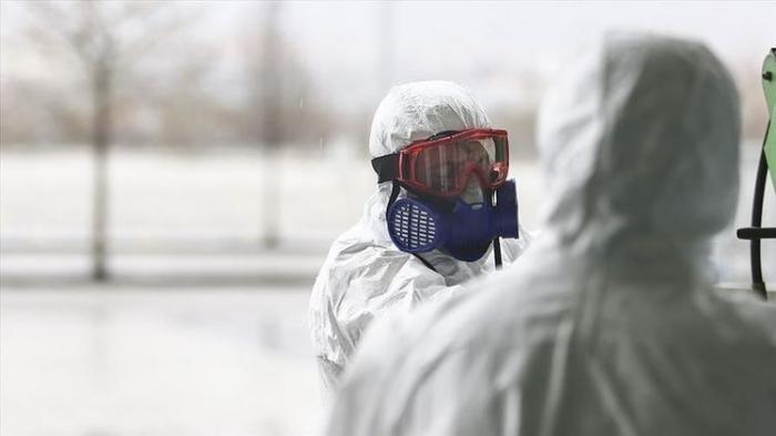 Swiss coronavirus death toll rises to 540