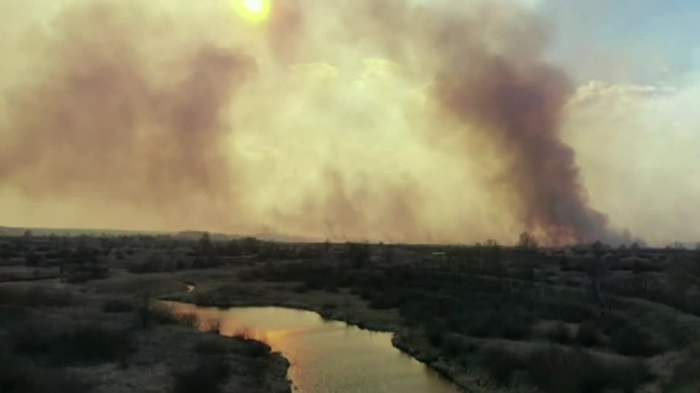 Forest fires rage in Chernobyl area as radiation
