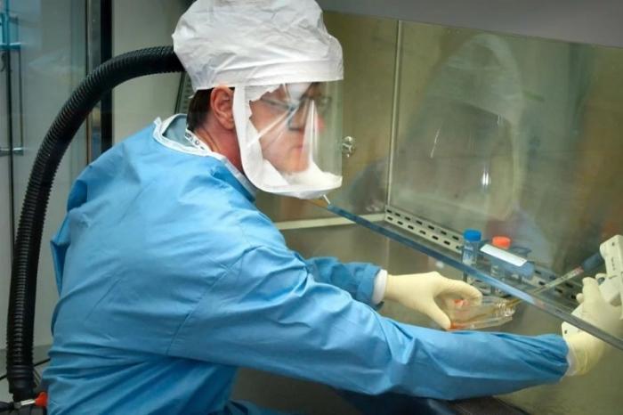 ABŞ-da virusdan ölənlərin sayı 13 minə çatır
