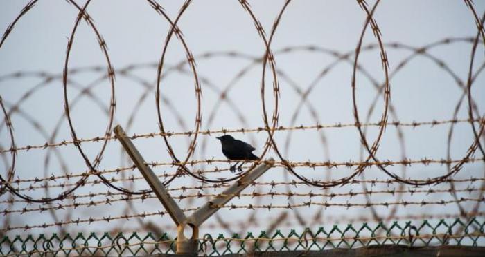 Fransada 6 mindən çox məhbus azadlığa buraxıldı