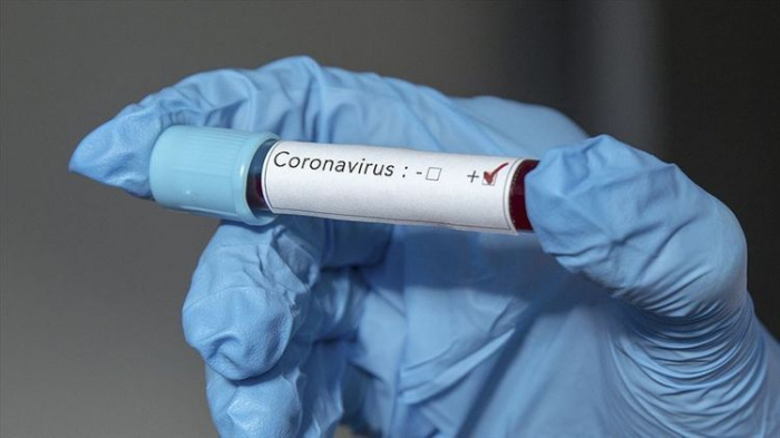 Coronavirus cases in Azerbaijan rise to 5494, 101 recovered