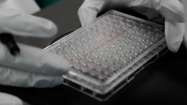 Les Etats-Unis lancent un plan massif de test des vaccins expérimentaux contre le coronavirus
