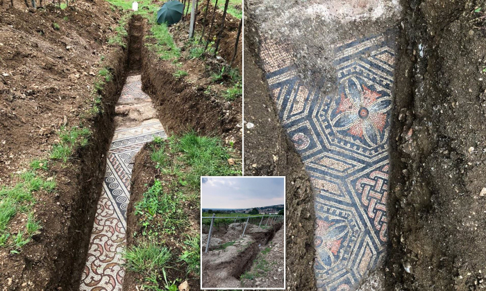 Italy unearths Roman mosaic after century-long hunt