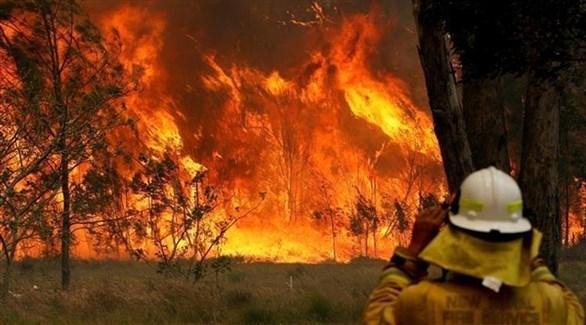 محكمة أسترالية ترفض توزيع التبرعات الضخمة لحرائق الغابات