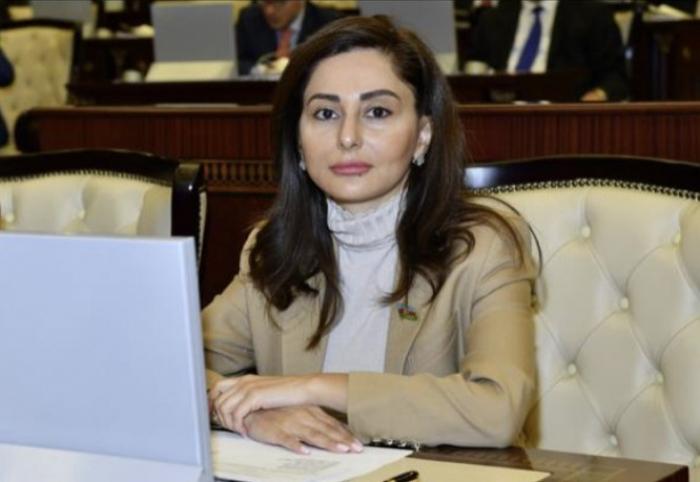 Deputat ATƏT PA-da erməni təxribatlarından danışdı