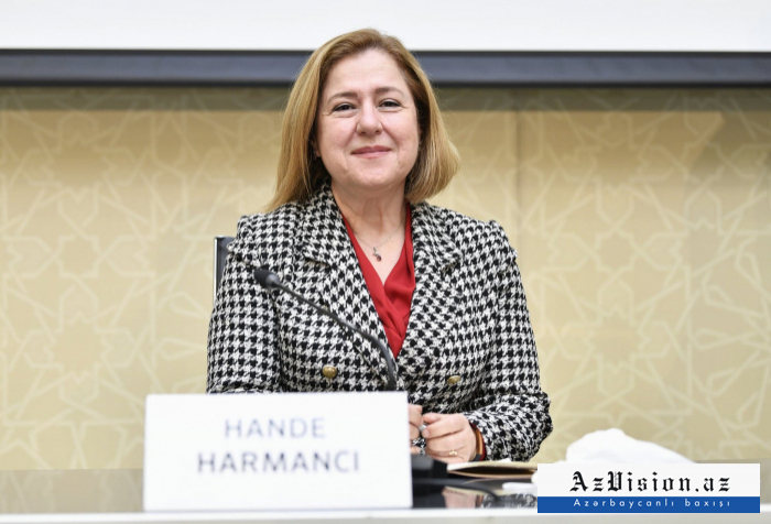 WHO representative in Azerbaijan speaks of current situation regarding COVID-19